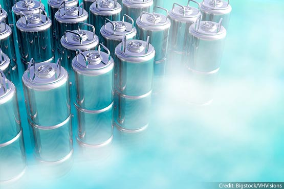 What legal issues present themselves if an individual is cryogenically preserved?